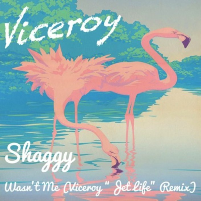 "Shaggy - Wasn't Me (Viceroy ""Jet Life"" Remix) : Tropical Remix Of A Throw Back [Free Download] - Featured Image"