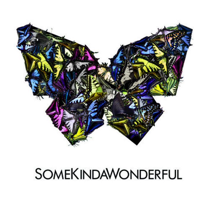 SomeKindaWonderful - Reverse (Passion Pit Remix) : Indie / Electro  - Featured Image
