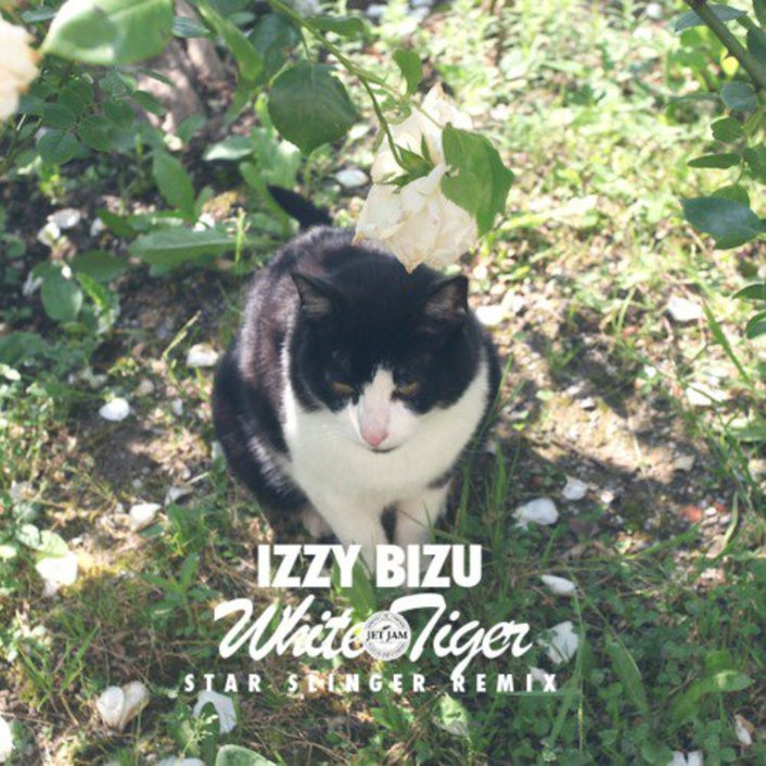 Star Slinger Freshens Up Izzy Bizu 'White Tiger' with Unreal Indie / House Remix [Free Download] - Featured Image